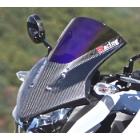 【Magical Racing】Visor風鏡