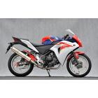【YAMAMOTO RACING】SPEC-A TYPE-1 競賽専用全段排氣管