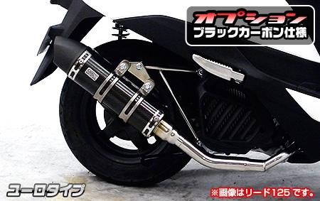 Royal Sport Type 全段排氣管 (黑色碳纖維)