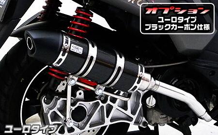 Royal全段排氣管 Euro型 黑色碳纖維款式