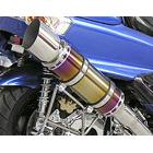 【WirusWin】Beast全段排氣管 TYPE E 燒色重低音版 附觸媒 (排氣淨化觸媒)