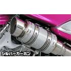 【WirusWin】Atomic短版全段排氣管 火箭筒型 銀色碳纖維款式+加高套件 重低音版附觸媒 (排氣淨化觸媒)