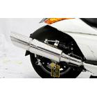 【WirusWin】Big Cannon全段排氣管 附觸媒 (排氣淨化觸媒)