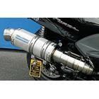 【WirusWin】Premium全段排氣管 銀色碳纖維款式 重低音版