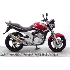 【WirusWin】Dynamic Sport Type 全段排氣管 (Gradient 鈦合金)
