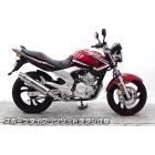 【WirusWin】Dynamic Sport Type 全段排氣管 (Solid 鈦合金)