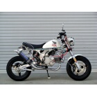 【OVER】RACING-DOWN 碳纖維排氣管 - 「Webike-摩托百貨」