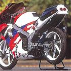 【SPI】Twin Tail ・SP膨脹室排氣管 (鋁合金消音器)