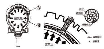 雙層防漏型內胎
