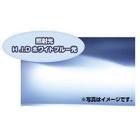 【PIAA】MB69 Xtreme Force燈泡