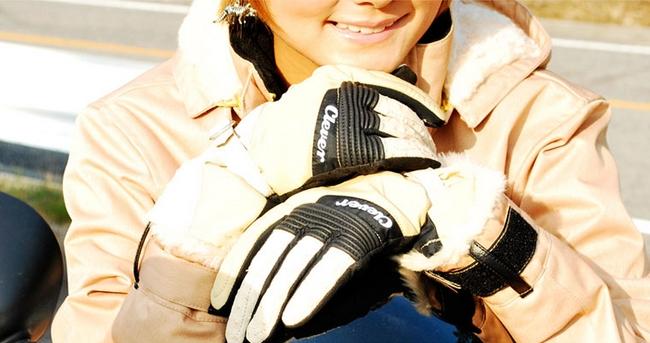 【CLEVER】冬季手套 - 「Webike-摩托百貨」