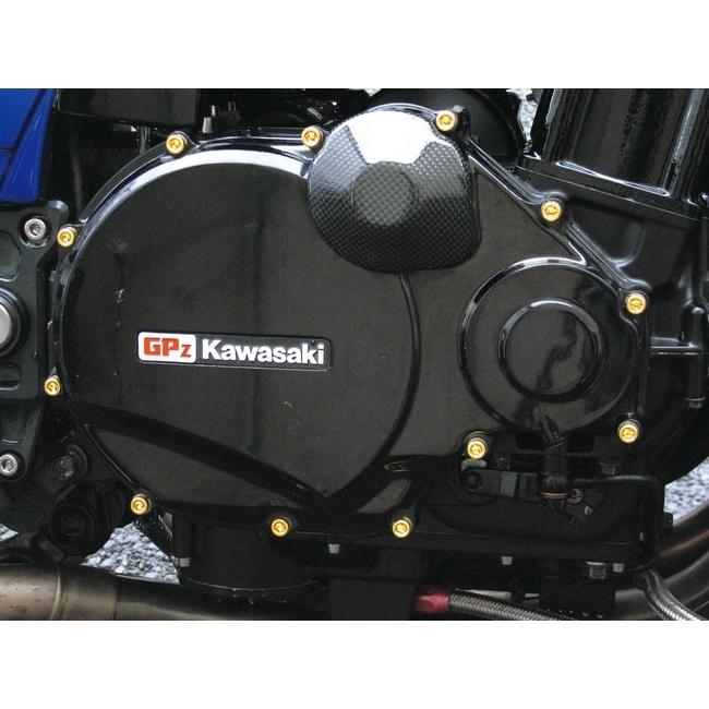 24K鍍金 不銹鋼拾波線圈蓋螺絲組