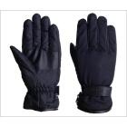 【LEAD】WARMTH GW-317A 防風冬季手套