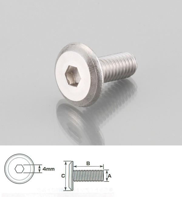 扁平頭內六角螺絲 (SUS)6×15/1P