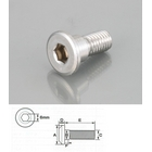 KITACO Rotor bolt (Stainless,)