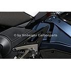 【ILMBERGER】碳纖維腳跟護蓋 (左側)