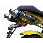 【R-style】SPIDER125 Dual Python 雙出型全段排氣管
