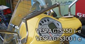 GTS 250ie/GTS 300ie用 導航機固定架