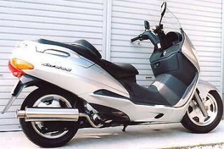 RSY Big Horn 不銹鋼全段排氣管:Skywave 250(CJ42A)用