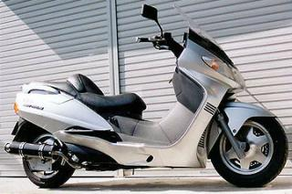 RSY Big Horn 黑色碳纖維全段排氣管:Skywave 250(CJ42A)用