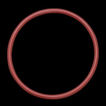 主驅動齒輪用O環