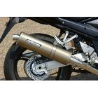 【BODIS】不銹鋼排氣管尾段 (Oval 1OK G)