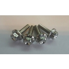 【BIKERS】Stainless bolt set For windshield 風鏡用 不銹鋼螺絲