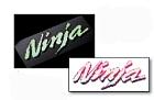 【KAWASAKI】Ninja夜光貼紙 - 「Webike-摩托百貨」