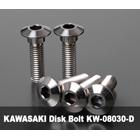 【βTITANIUM】Kawasaki車用 煞車碟盤螺絲 M8×30L