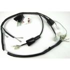 MINIMOTO Main Harness for Honda 12V Monkey (OEM Battery Correspondence)
