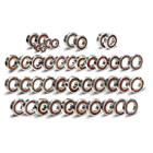 Faito Racing Camshaft Bearings (S720)