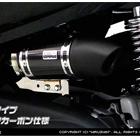 【WirusWin】消音器型空氣濾清器套件 (Euro Type)