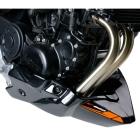 【Puig】引擎擾流板