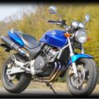 【MotoGear】HORNET 250 PRISM 全段排氣管