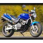 【MotoGear】HORNET 250 PRISM 排氣管尾段