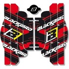【Blackbird Racing】RAD LOUVER 貼紙