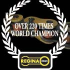 レジーナ/PROFESSIONALシリーズチェーン : 120リンク