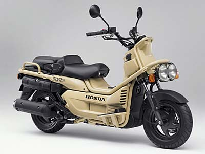 HONDA PS250(Big Ruckus)