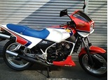 MVX250F