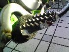 【MUDOFF】腳踏襯底 - 「Webike-摩托百貨」