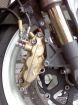 【GOODRIDGE】Buildaline 煞車油管 - 「Webike-摩托百貨」