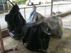 【DAYTONA】標準型黑色摩托車罩 - 「Webike-摩托百貨」