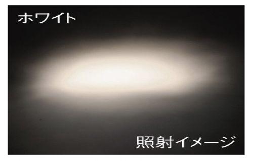 【Absolute】高効能燈泡 - 「Webike-摩托百貨」
