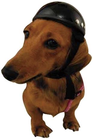 【DAMMTRAX】動物安全帽 - 「Webike-摩托百貨」