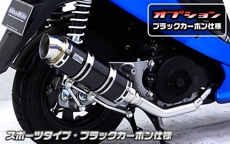 【WirusWin】Royal全段排氣管 Spotrs型 附觸媒 - 「Webike-摩托百貨」