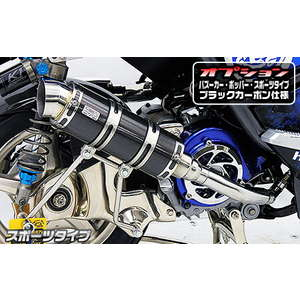Royal Exhaust System Sports Type Black Carbon Specification WirusWin