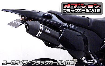 【WirusWin】排氣管尾段 Spotrs型 黑色碳纖維款式 - 「Webike-摩托百貨」