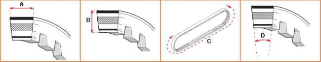 【MALOSSI】XKevlar強化皮帶 - 「Webike-摩托百貨」
