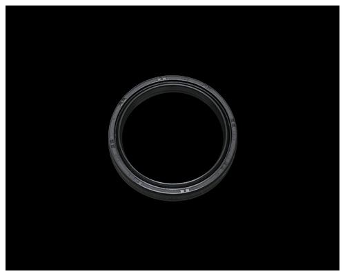 【Neofactory】49mm內管用 前叉油封 - 「Webike-摩托百貨」