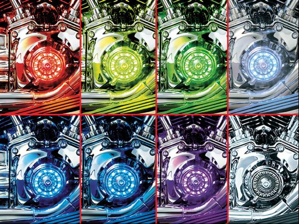 【kuryakyn】Super Lizard LED 裝飾燈 (Starter Kit) - 「Webike-摩托百貨」